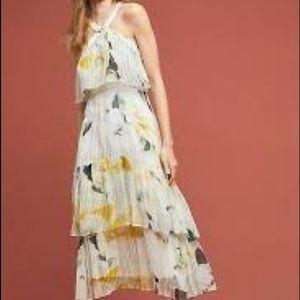 Anthropologie Dresses - Anthropologie Garden Party Dress 26W $240 NWOT